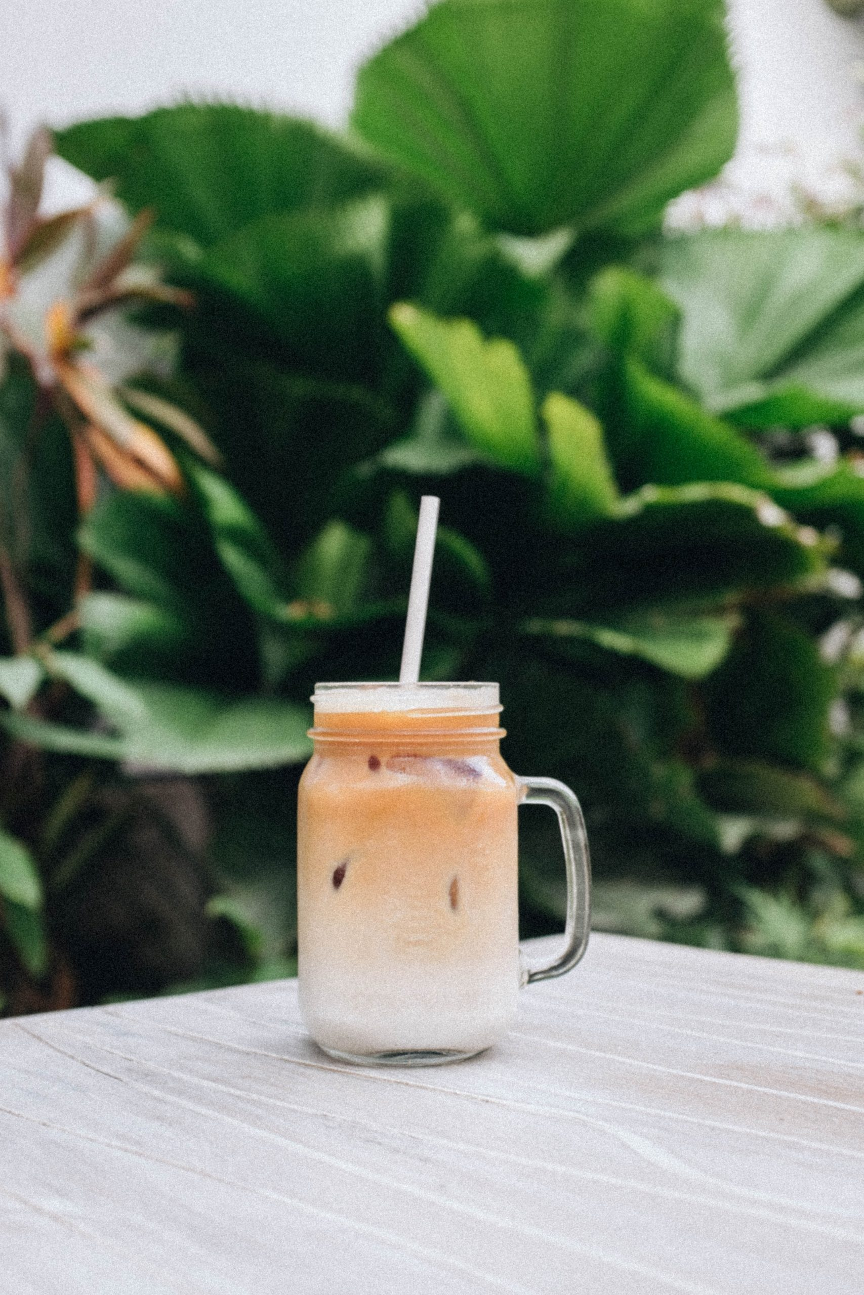 an iced latte with palm fronds in the background